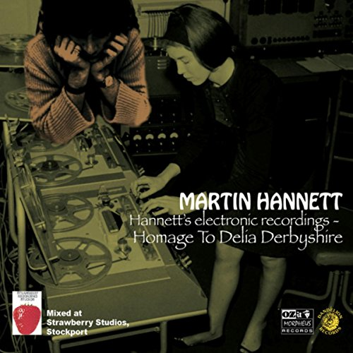 Martin Hannett - Hannetts Electronic Recordings Homage To Delia Derbyshire - CD - FLAC - 2017 - NBFLAC Download