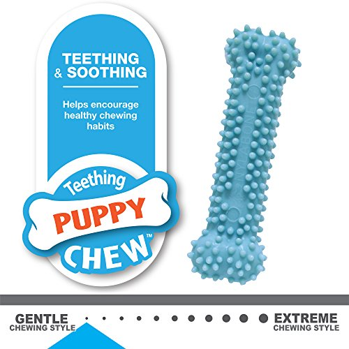 Large Product Image of Nylabone Puppy Chew Variety Toy & Treat Triple Pack, Chicken|Lamb|Apple, 3Count, Regular
