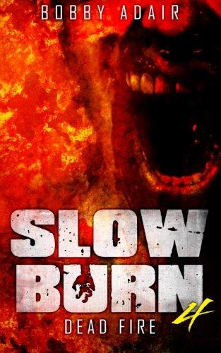 Slow Burn Dead Fire Book