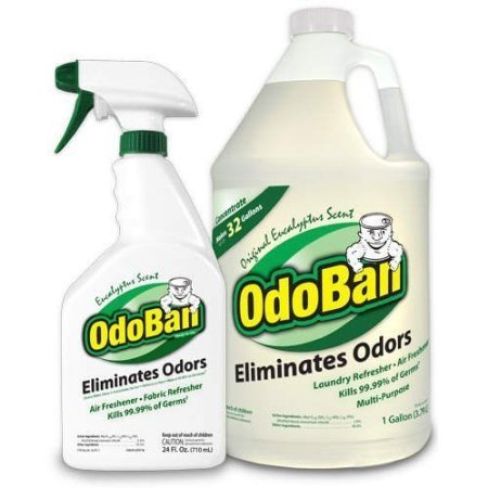 OdoBan Ready-to-Use 32 oz Spray Bottle and 1 Gal Concentrate, Eucalyptus Scent - Odor Eliminator, Disinfectant, Flood Fire Water Damage Restoration
