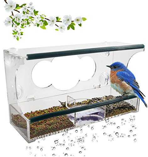 Birdious Window Bird Feeder with Strong Suction Cups, Removable Seed Tray, Enjoy Clear View Wild Bluebird. Large Squirrel Proof Birdhouse for Outdoors Mounted on Outside Glass. Best Gift Idea Cardinal Nest