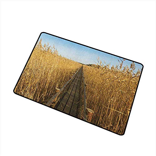 Nature Non Slip Doormat Old Narrow Floating Walkway in The Lake Surrounded by Reeds Greenland Nature Theme Super Absorbs Mud 16