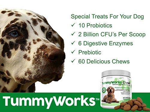 TummyWorks Probiotic Chews for Probiotics