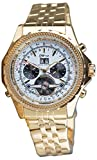 Daniel Steiger Enduro Automatic Men's Watch - White Dial - Gold Plated Stainless Steel Case - Day, Date & Month Calendar - Skeleton Case Back