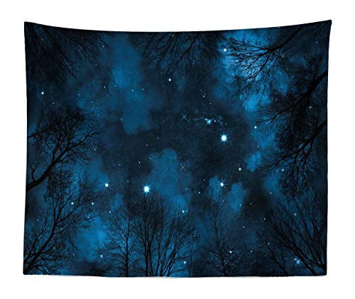Lunarable Night Sky Tapestry King Size, Spooky View Through Forest Branches Trees Foggy Sky Stars, Wall Hanging Bedspread Bed Cover Wall Decor, 104 W X 88 L Inches, Petrol Blue Dark Blue -
