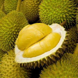 KC Commerce MUSANG KING Durian Bites 6 pcs/ bag Pack of 2 by KC Commerce (Image #2)'