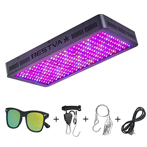 The Best Led Grow Lights