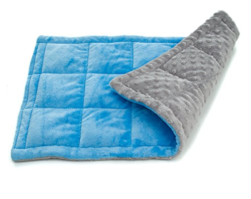 Double minky weighted sensory lap pad for kids and adults