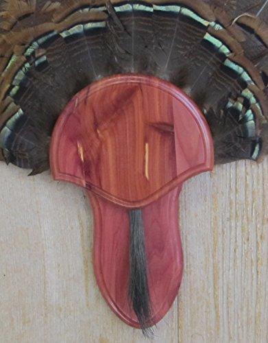The Taxidermists Woodshop Cedar Turkey Mounting Kit with Beard Plate ()