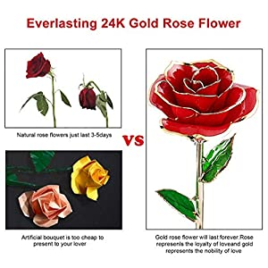 Mother's Day Gifts 24K Gold Dipped Real Rose Everlasting Rose for Mom, Forever Flower Anniversary Gifts for Her, Women Girls Wedding Birthday Presents(with Moon Stand, Gift Box) 4