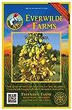 Everwilde Farms - 60 Wild Senna Native Wildflower Seeds - Gold Vault Jumbo Seed Packet