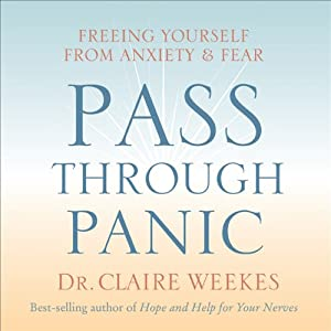 Pass Through Panic Audiobook