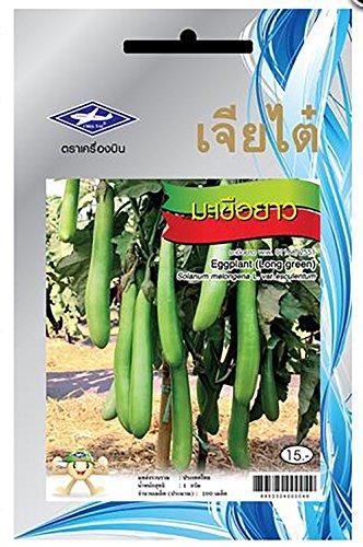 the-best-seller-200-seeds-green-long-eggplant-seeds-asian-fruit-vegetable-seeds-high-germination-rat