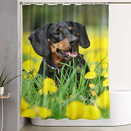 Techdecorhomee Shower Curtains Set with Hooks Dachshund Floral Soap Mildew Resistant Waterproof Antibacterial Polyester Decor Bathroom Curtain 6071inch/150180cm