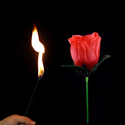 AKDSteel Novelty Torch to Rose Magic Trick Fire Flame Flower for Stage Performance Show Prop Toy: Home & Kitchen