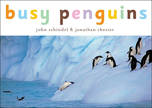 Busy Penguins (A Busy Book)