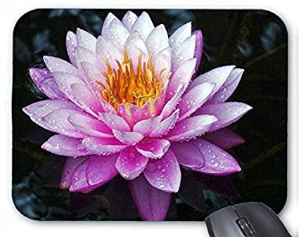 Amazon durable gaming mouse pad purple lotus flower and its durable gaming mouse padpurple lotus flower and its meaning mouse mat mightylinksfo