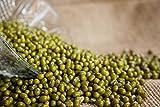Home Comforts Laminated Poster Mung Beans Moong Bean Vigna Radiata Green Gram Poster Print 24 x 36