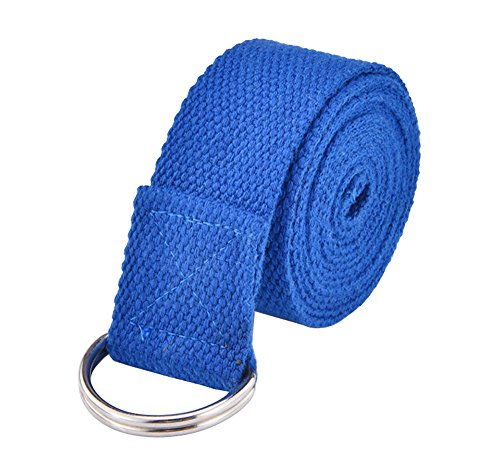 Egojin Yoga Strap - Best For Stretching - 5 Colors - Instructional Video - Durable Cotton With Metal D-Ring (blue)