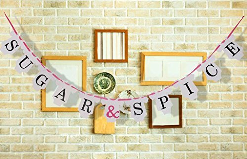 Sugar & Spice Banner Bunting Baby Shower Party Decorations - Sugar Babies Baby Bunting
