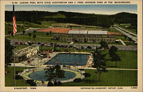 (Legion Pool with Civic Auditorium and J. Fred Johnson Park in the Background Original Vintage)