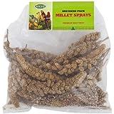 Bird Millet Spray Healthy Natural Treat - 1kg Pack (Avione)
