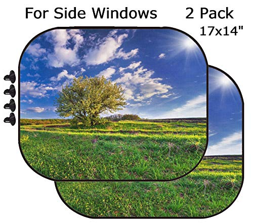 - MSD Car Sun Shade - Side Window Sunshade Universal Fit 2 Pack - Block Sun Glare, UV and Heat for Baby and Pet - Image 26530134 Flowering pear Tree in Spring