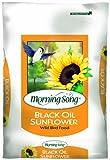 Morning Song Black Oil Sunflower Wild Bird Food, 40-Pound, My Pet Supplies