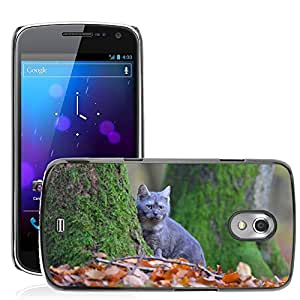 Super Stella Slim PC Hard Case Cover Skin Armor Shell Protection // M00103831 Cat Breed Cat Blue Forest Leaves // Samsung Galaxy Nexus GT-i9250 i9250