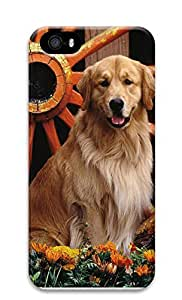 iPhone 5 5S Case Dogs And Windmills 3D Custom iPhone 5 5S Case Cover