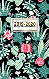 2019-2020 Monthly Pocket Planner: Two-Year Monthly Cactus Bonanza Pocket Planner with Phone Book, Password Log and Notebook. Nifty Succulent 24 Month Agenda, Calendar and Organizer.