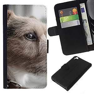 Parson Russell Terrier Small Dog Shorthair - la tarjeta de Crédito Slots PU Funda de cuero Monedero caso cubierta de piel HTC Desire 820