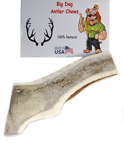 Big Dog Antler Chews Grade A Premium Split Elk Antler Dog Chew, X-Large, Extra Thick, 6 inches to 8 inches, Natural Healthy Long-Lasting Treat. For Large to Extra Large Dogs! Happy Dog Guarantee!