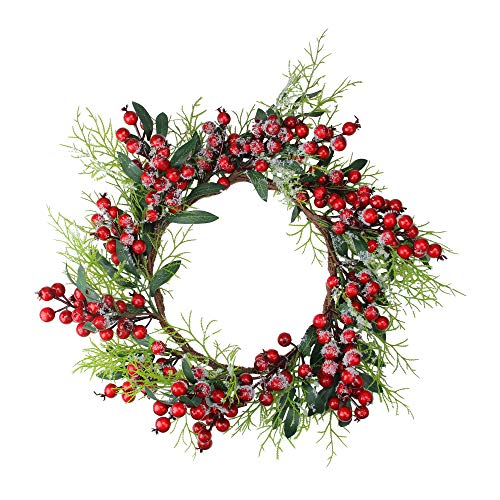 Northlight Frosted Green Leaves and Red Berries Artificial Christmas Wreath - 18-Inch, Unlit ()