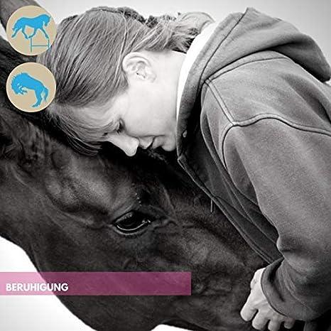 EMMA Magnesio Vitamina B12 para Caballos I Calma para ...