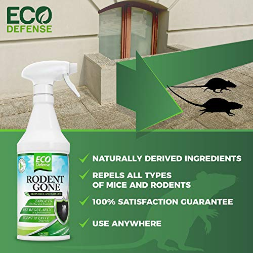 Buy mouse repellent spray