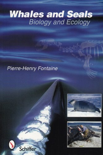 Whale Seal (Whales and Seals: Biology and Ecology by Pierre-Henry Fontaine (2007-07-01))