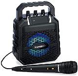SoundBeast Firebird Karaoke Machine & Portable PA Speaker System For Kids & Adults