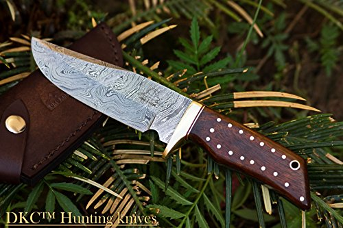 DKC-500-COUGAR-Damascus-Steel-Bowie-Hunting-Knife-9-Long-4-Blade-74-oz-Dark-Walnut