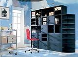 Foremost 327906 Modular Large 2 -Drawer Cube Storage System, Black