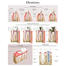 Dentistry e-chart: Quick reference guide