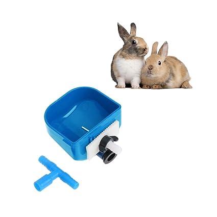 Haorw Animales Pequeños botellas de agua Bebedero para conejos Agua zubringer