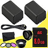 TWO BP-819 Lithium Ion Replacement Battery + 8GB SDHC Class 10 Memory Card + 43mm 3 Piece Filter Kit + Wide Angle Lens + 2x Telephoto Lens + Mini HDMI Cable for Canon Vixia HFM40 HFM41 HFM400 HV30 Digital Camcorders DavisMAX BP819 Accessory Bundle