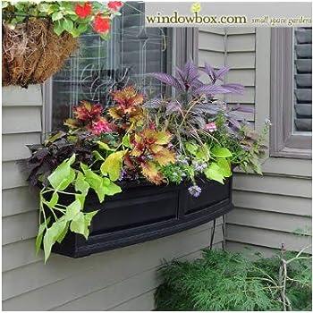 Amazon.com : Panacea Products Balcony 24-Inch Window Box