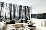 1Wall Black and White Forest Wall Mural