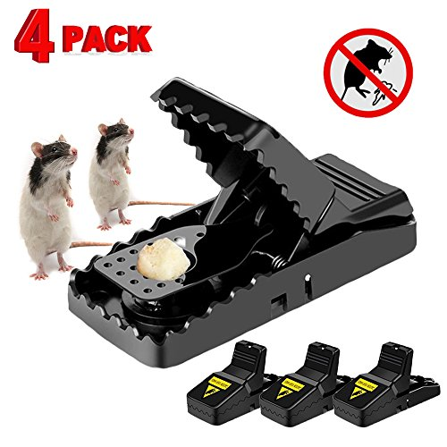 Iprotek Rat Trap - Powerful Mini Mouse Trap Kit Mole Vole Killer That Work for Mice Control Indoor Outdoor Safe to Set Bait More Effective Than Humane Wooden Rodent Catcher - 4 Pcak Snap Traps by Iprotek