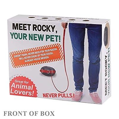 FOLE Prank Gift Box Pet Rocky: Toys & Games