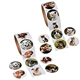 Fun Express Animal Sticker Roll Bundle | Dog Sticker Roll and Cat Sticker Roll (100 Stickers per Roll, Shrink-Wrapped)