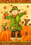 """ Scarecrow Owl "" – Fall Themed – Double Sided – Standard Size 28 Inch X 40 Inch – Decorative Flag Review"