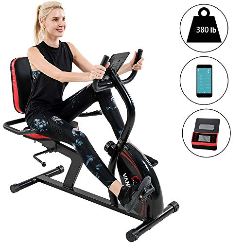 Recumbent Exercise Bike 16 Levels Magnetic Tension Resistance 380 lbs. Stationary Bike with Adjustable Seat, Transport Wheels and Bluetooth Connectivity for Workout and Physical Therapy